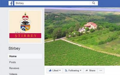 A new book about Ştirbey Winery